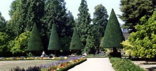Prince Bishop Palace Garden Gumdrop Trees